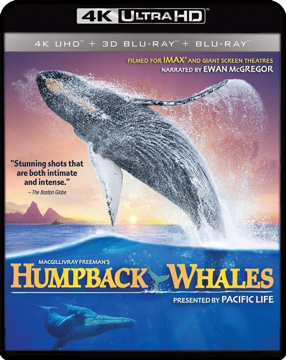 Humpback Whales (2015) 4K Ultra HD Blu-ray