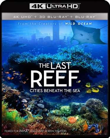 The Last Reef: Cities Beneath the Sea (2012) 4K Ultra HD Blu-ray