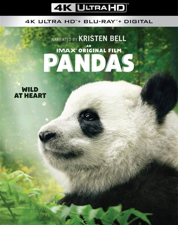 Pandas 4K (2018) Ultra HD