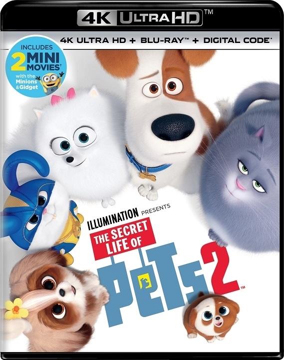 The Secret Life of Pets 2 (4K Ultra HD Blu-ray)(Pre-order / Aug 27)