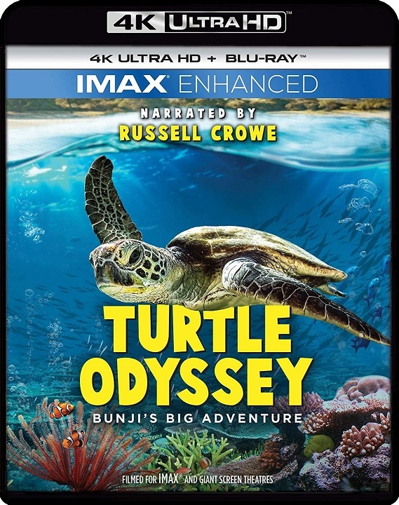 Turtle Odyssey (IMAX Enhanced)(4K Ultra HD Blu-ray)