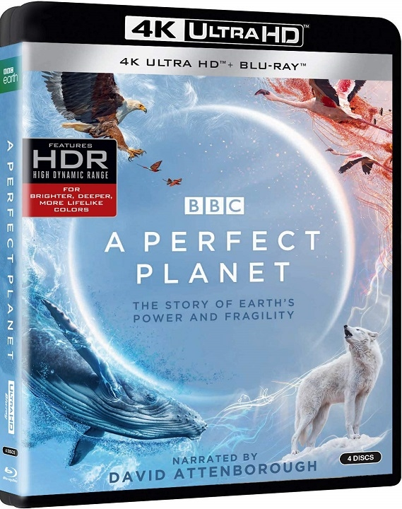A Perfect Planet in 4K Ultra HD Blu-ray at HD MOVIE SOURCE