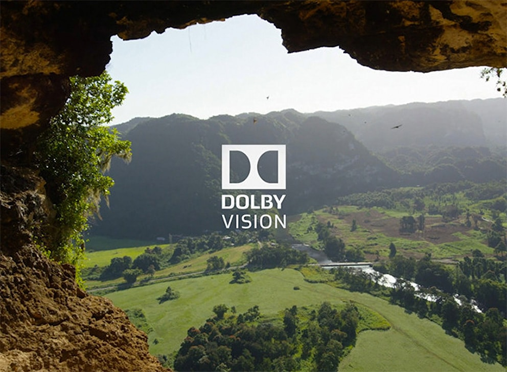 DOLBY VISION MOVIES